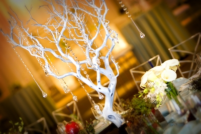 wedding_branch_1